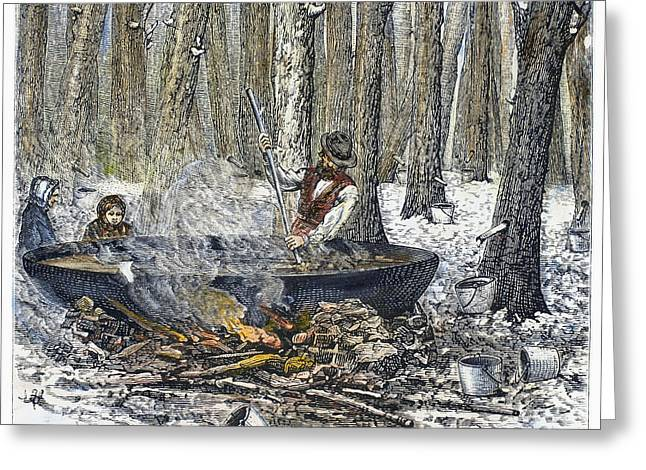 Boiling Greeting Cards - Maple Syrup, 1877 Greeting Card by Granger