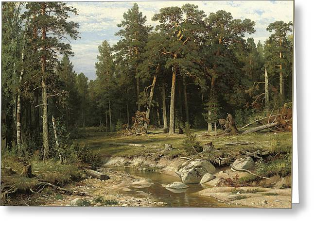 Mast Pine Forest In Viatka Province Greeting Card by Ivan Shishkin
