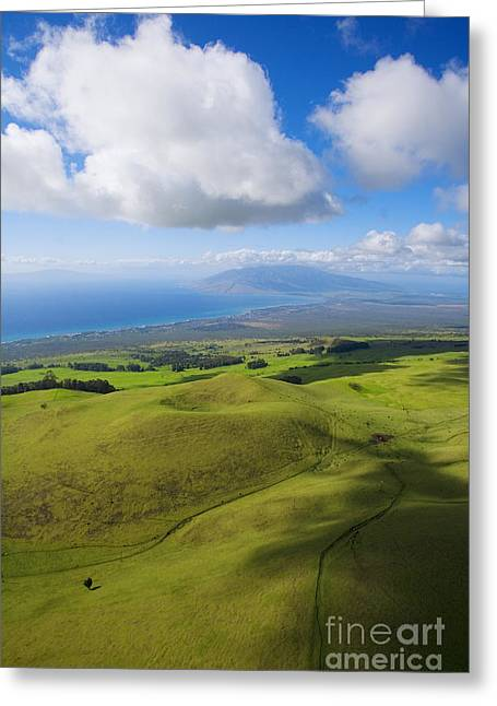Best Sellers -  - Pastureland Greeting Cards - Maui Aerial Greeting Card by Ron Dahlquist - Printscapes