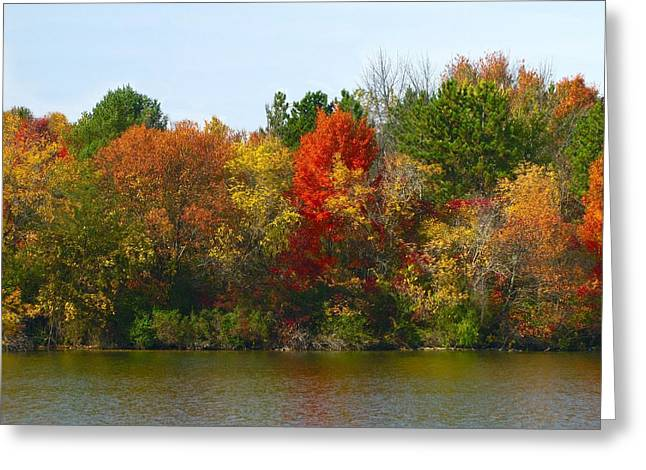 Hovind Greeting Cards - Michigan Fall Colors Greeting Card by Scott Hovind