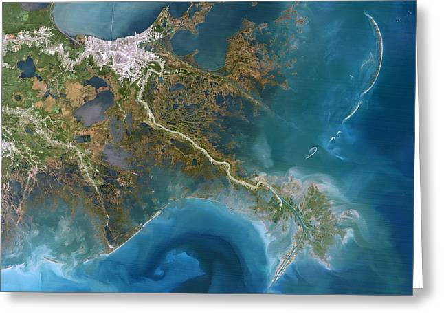 1990s Greeting Cards - Mississippi Delta, Satellite Image Greeting Card by Planetobserver