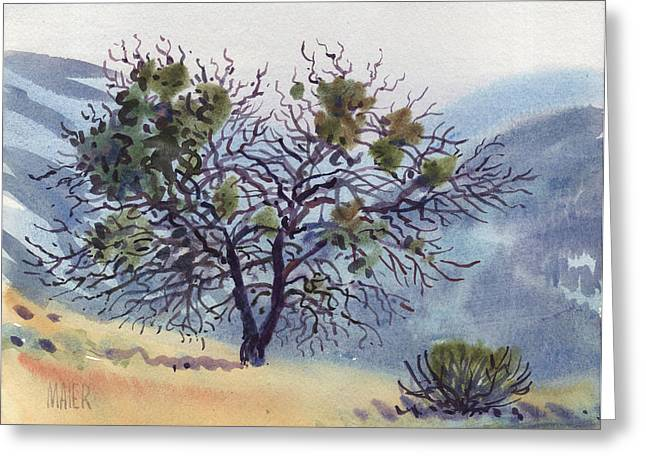 Oak Paintings Greeting Cards - Mistletoe on Mt Tamalpais Greeting Card by Donald Maier