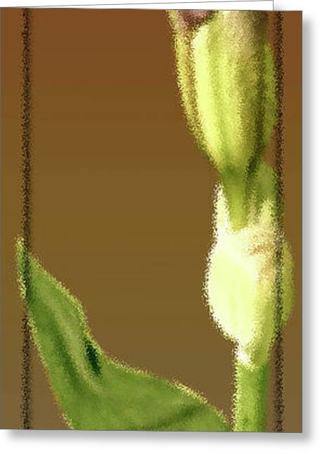 Bold Style Greeting Cards - Mix Or Match Flower Buds Greeting Card by Debra     Vatalaro