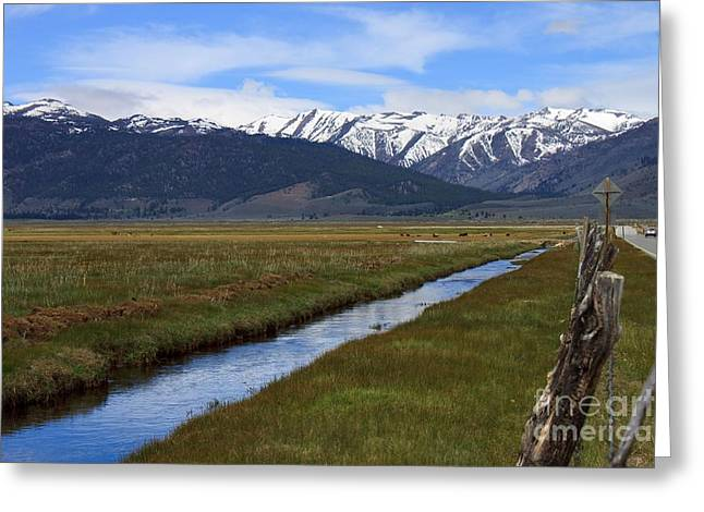 Thomas Marchessault Greeting Cards - Mono County Nevada Greeting Card by Thomas Marchessault
