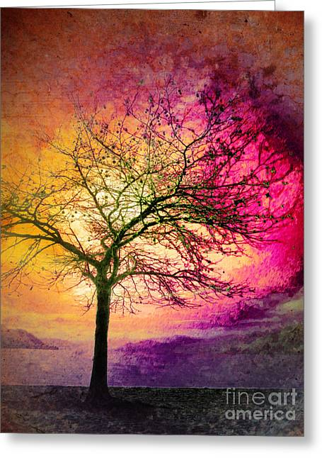 Penticton Greeting Cards - Morning Fire Greeting Card by Tara Turner