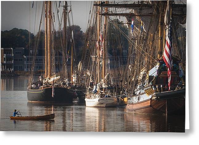 Historic Schooner Greeting Cards - Morning Light - Chestertown Downrigging Weekend Greeting Card by Lauren Brice