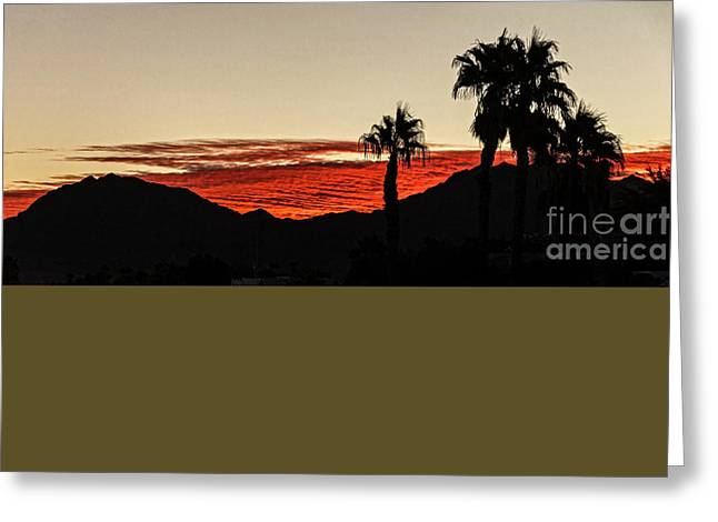 Sunset View Greeting Card by Robert Bales