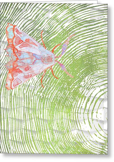 Nature Study Greeting Cards - Moth Maze Greeting Card by B Campbell