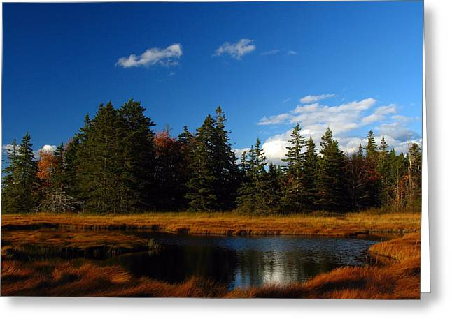 Maine Landscape Greeting Cards - Mount Desert Island Greeting Card by Juergen Roth