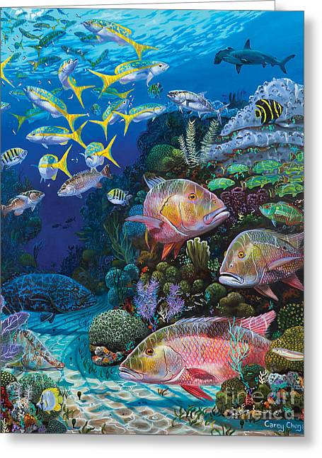 Mutton Snapper Greeting Cards - Mutton Reef Greeting Card by Anthony C Chen