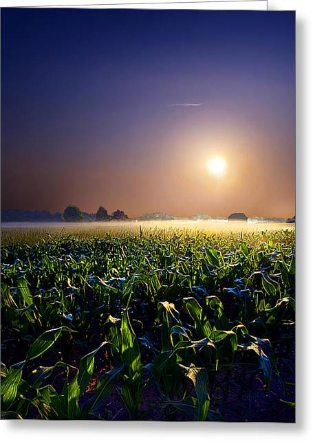 Horizon Greeting Cards - Mystic Greeting Card by Phil Koch