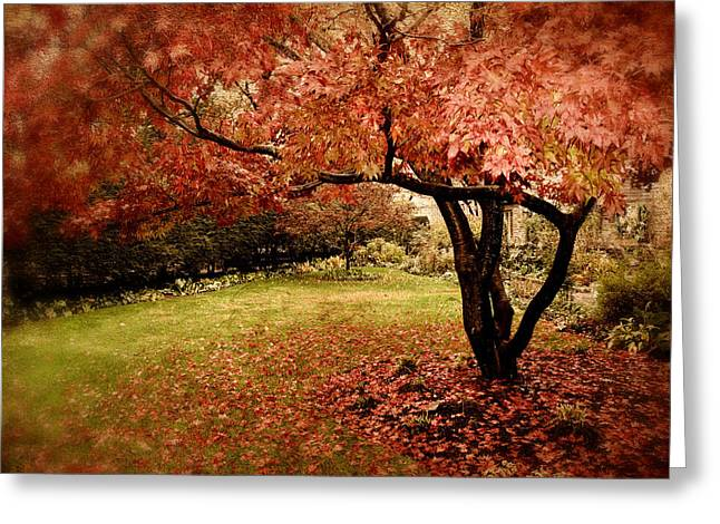 Red Leaves Digital Greeting Cards - Mystical Maple Greeting Card by Jessica Jenney