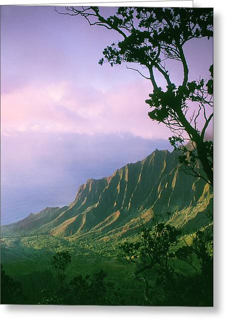 Mountaintop. Trees Greeting Cards - Na Pali Coast Greeting Card by Greg Vaughn - Printscapes