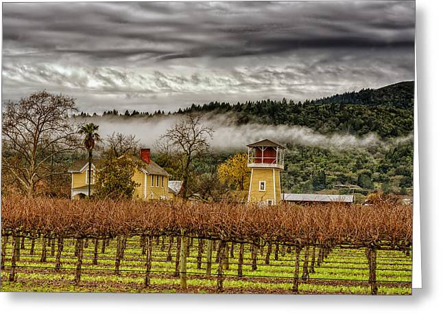 California Vineyard Greeting Cards - Napa Valley Vineyard On A Cloudy Day Greeting Card by Mountain Dreams