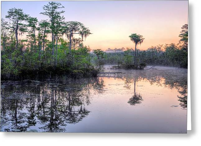 Florida Panhandle Sunset Greeting Cards - Natural Florida Greeting Card by JC Findley