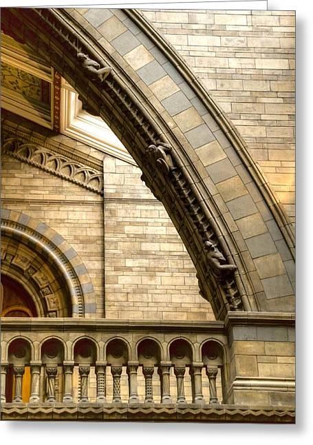 Natural History Museum Kensington  Greeting Card by David French