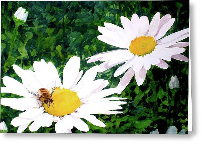 Daisy Reliefs Greeting Cards - Nectar for Breakfast Greeting Card by Dale Ziegler