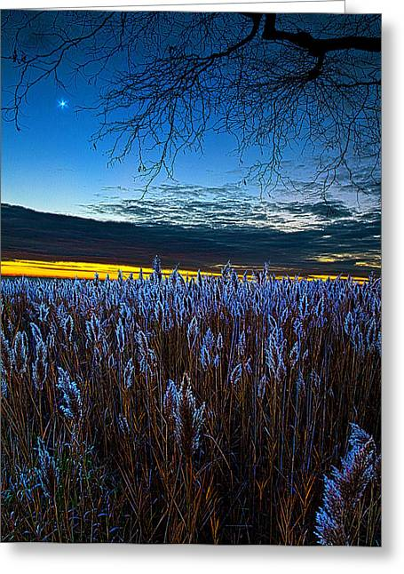 Geographic Greeting Cards - Night Light Greeting Card by Phil Koch