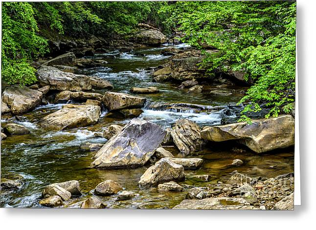 West Fork Greeting Cards - North Fork Cherry River Greeting Card by Thomas R Fletcher
