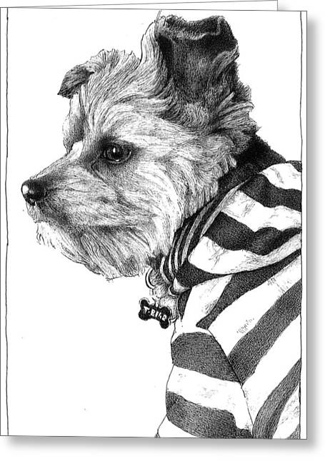 Puppies Drawings Greeting Cards - Oh Captain, My Captain Greeting Card by Lorraine Zaloom