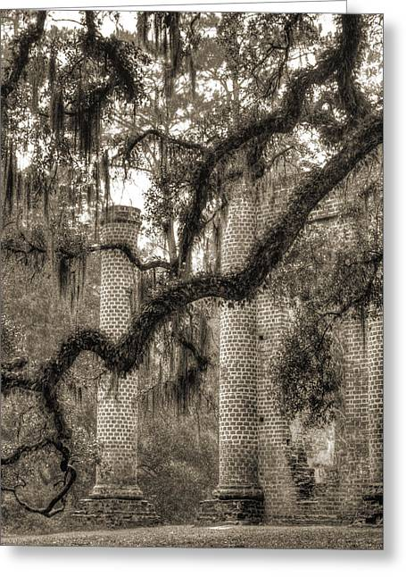 Old Sheldon Church Ruins Greeting Card by Dustin K Ryan
