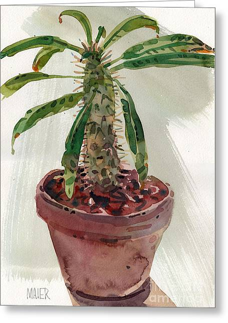 Pachypodium Greeting Card by Donald Maier