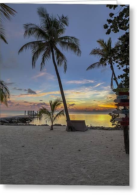 Ocean Shore Greeting Cards - Palm at Sunset Greeting Card by Al Hurley