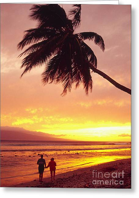 Overhang Greeting Cards - Palm Over The Beach Greeting Card by Ron Dahlquist - Printscapes