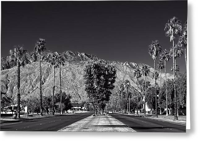 White Photographs Greeting Cards - Palm Springs California Greeting Card by Mountain Dreams