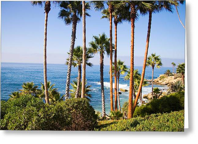 Spectacular Ocean Vistas Greeting Cards - Palms and Seashore California Coast Greeting Card by Utah Images