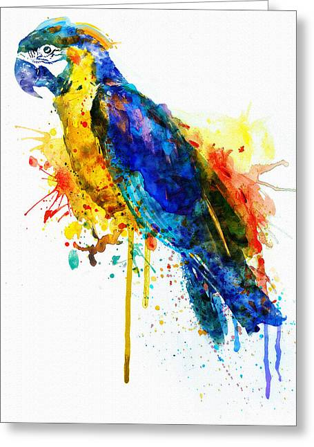 Wildlife Digital Art Greeting Cards - Parrot Watercolor  Greeting Card by Marian Voicu