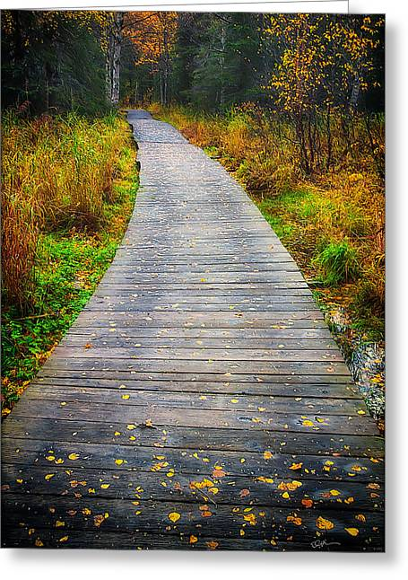 Pathway Home Greeting Card by Ed Boudreau