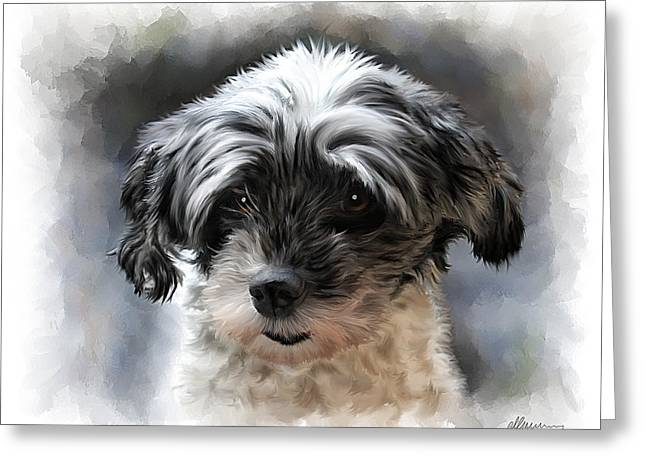 Pet Dog Portrait Greeting Card by Michael Greenaway
