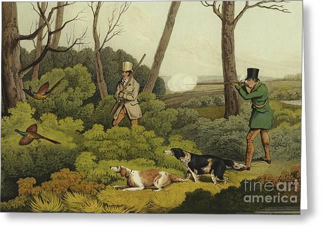 Pheasant Shooting Greeting Card by Henry Thomas Alken
