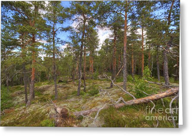 Moss Greeting Cards - Pinewood Greeting Card by Veikko Suikkanen