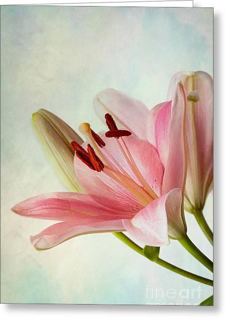 Pink Lilies Greeting Card by Nailia Schwarz