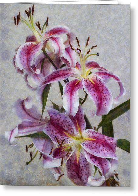 Pink Lillies Greeting Card by Ian Mitchell