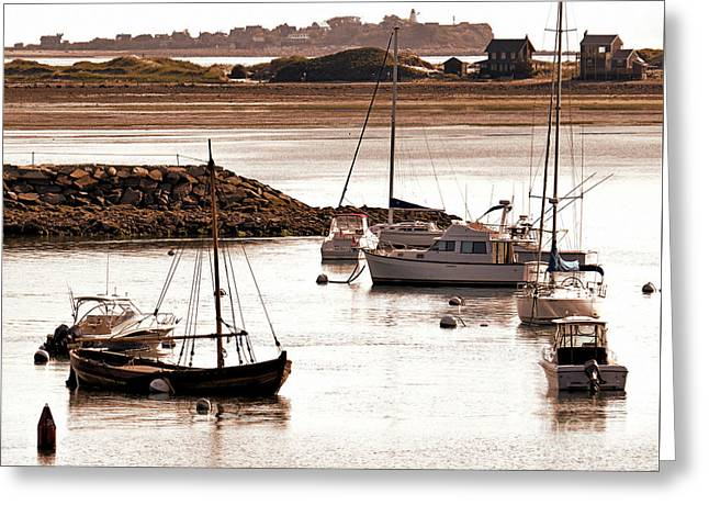 Gurnet Light Greeting Cards - Plymouth Harbor at Low Tide Greeting Card by Janice Drew