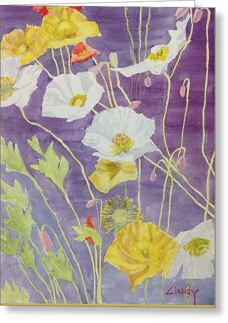White Paintings Greeting Cards - Poppies in Focus  Greeting Card by Cindy McLean