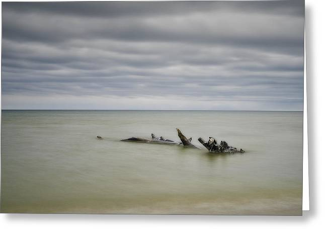 Best Ocean Photography Greeting Cards - Port Franks #4 Greeting Card by Jerry Golab