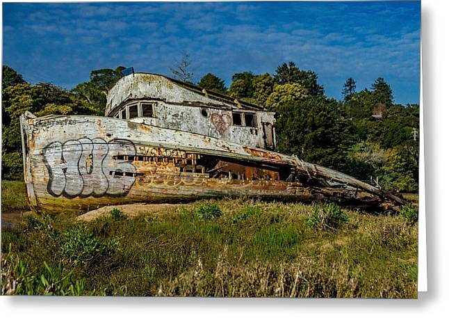 Port Side Of The Pt Reyes Greeting Card by Bill Gallagher
