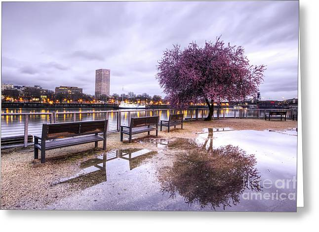 Portland Greeting Cards - Portland Oregon Waterfront Tree Reflection Greeting Card by Dustin K Ryan