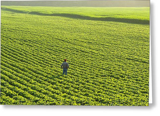 Man Looking Down Greeting Cards - Portrait Of A Farmer Walking Greeting Card by Scott Sinklier