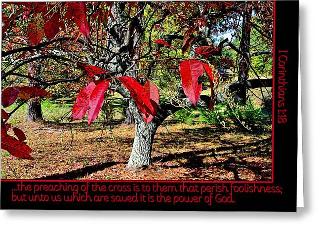 Bible Greeting Cards - Power of God Greeting Card by Larry Bishop