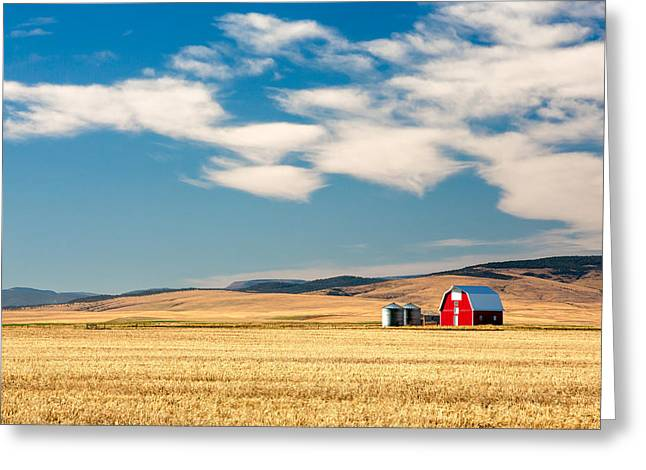 Prairie Red Greeting Card by Todd Klassy