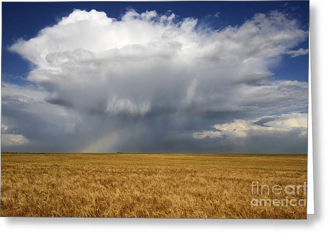 Alberta Prairie Landscape Greeting Cards - Prairie Sky Greeting Card by Bob Christopher