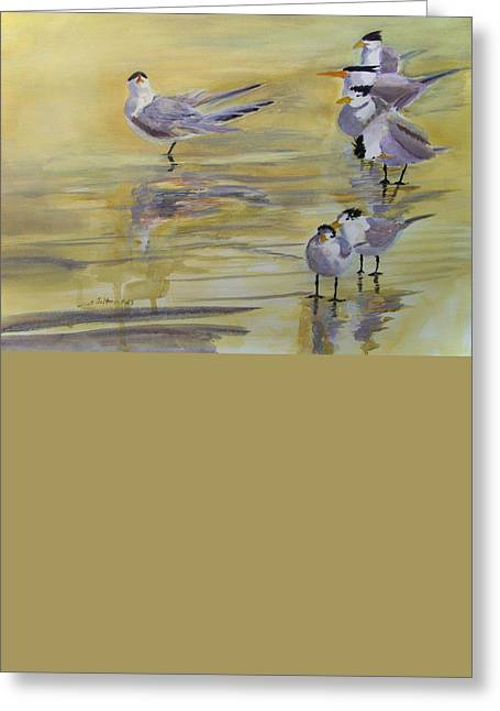 Tern Greeting Cards - Prima Donna 5-16-15 Greeting Card by Julianne Felton