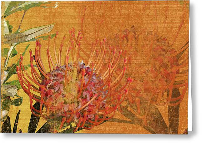 Cushions Mixed Media Greeting Cards - Protea 1 Greeting Card by Kaypee Soh - Printscapes