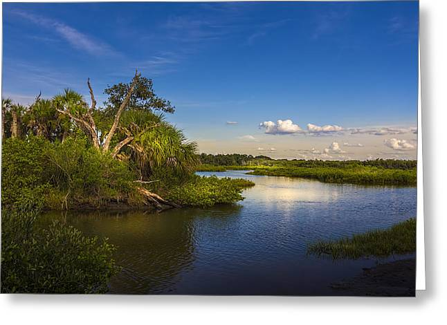 Protected Wetland Greeting Card by Marvin Spates