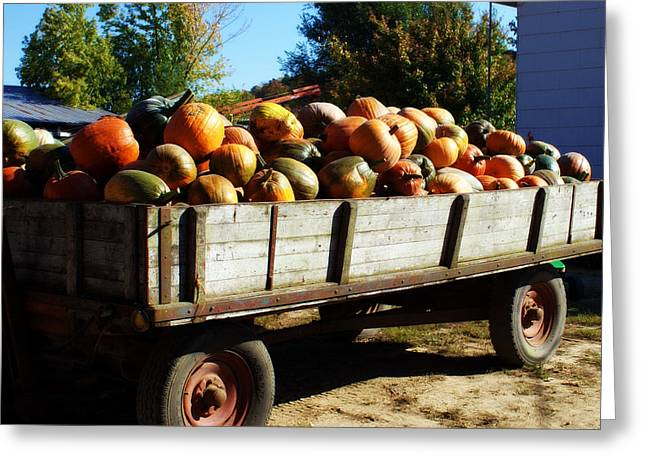 Hartsburg Greeting Cards - Pumpkin Wagon Greeting Card by Cricket Hackmann